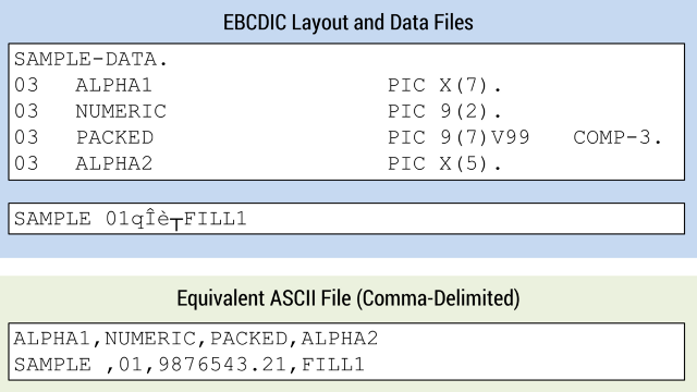 EBCDIC to ASCII Layout File Fields